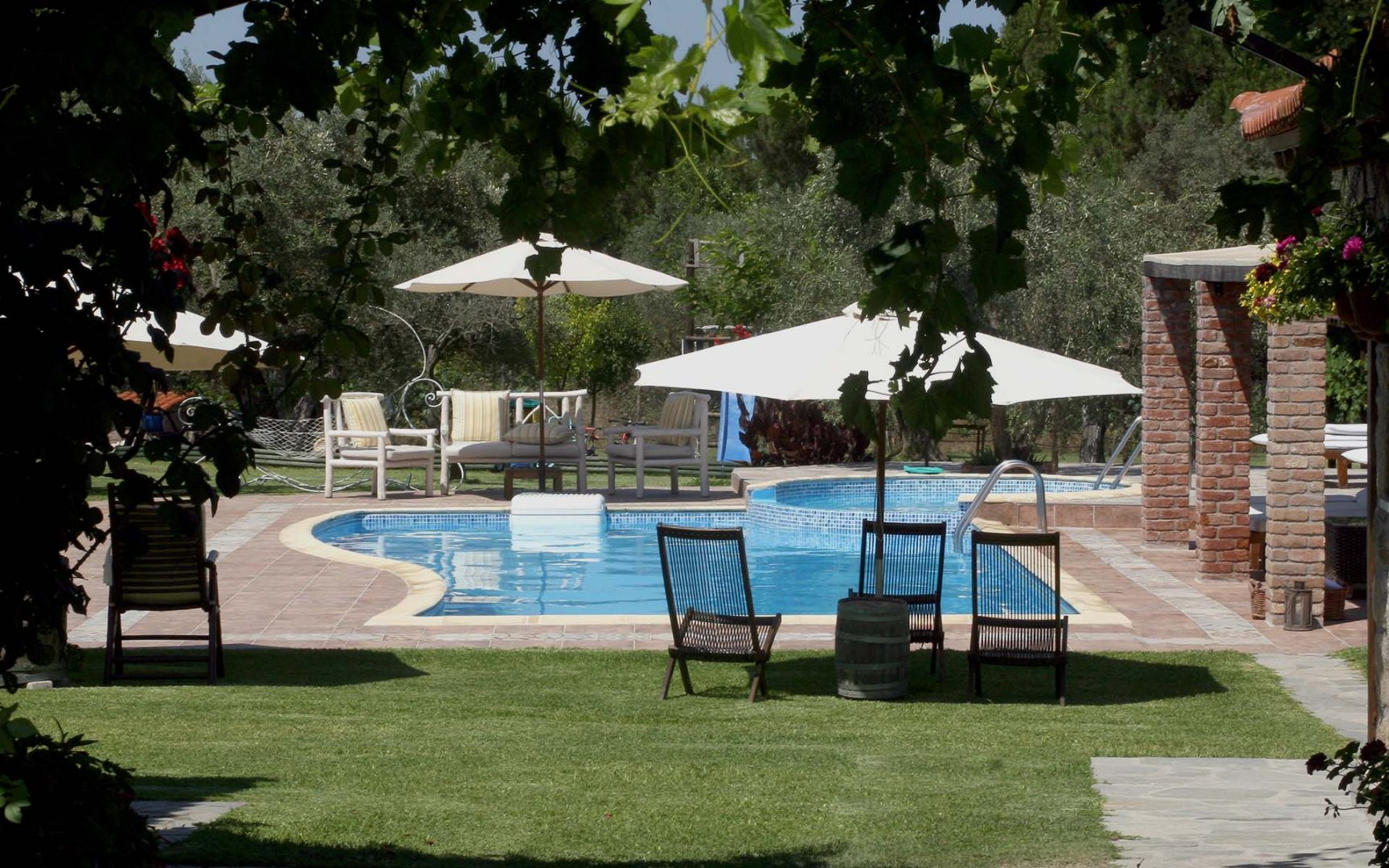 Six acres surrounded by ancient olive trees and vineyards